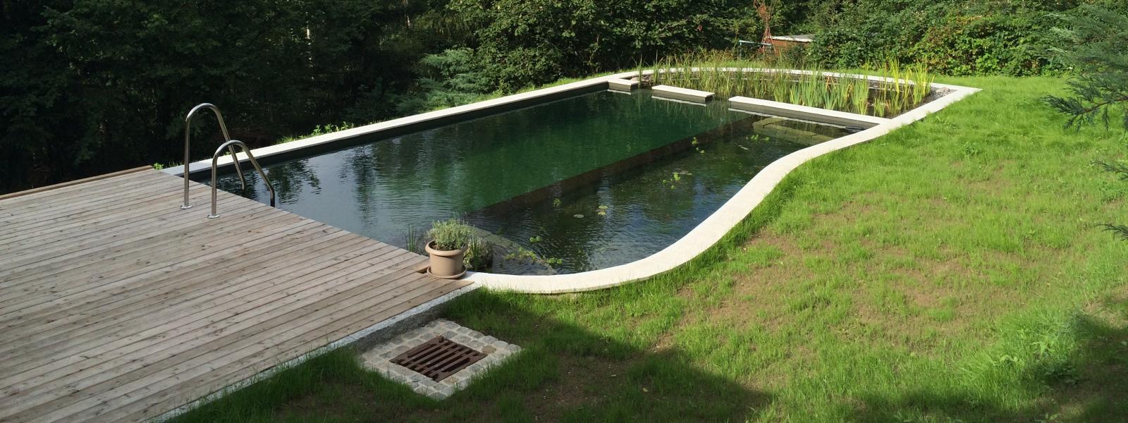 privater schwimmteich in zschopau re natur sachsen. Black Bedroom Furniture Sets. Home Design Ideas